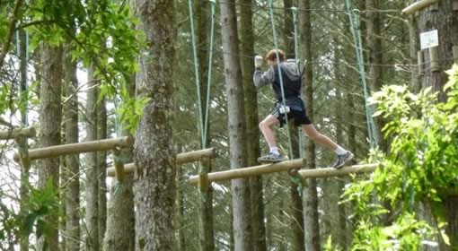 TECT Adrenalin Forest with Tauranga Boys College