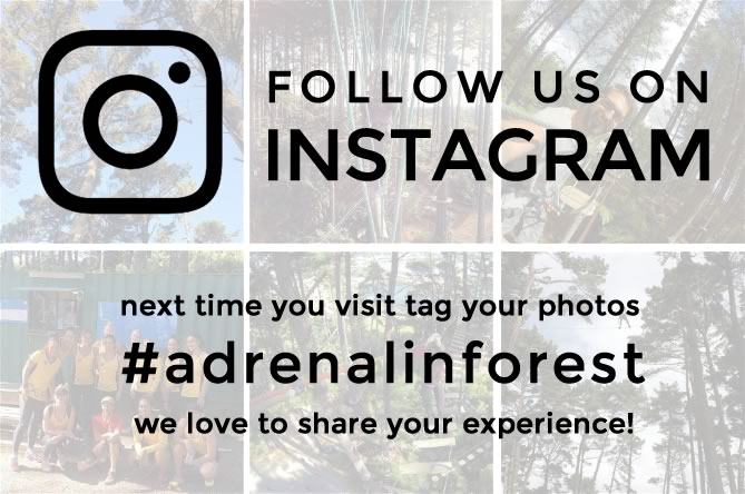 Adrenalin Forest Adventure Park High Ropes is now on Instagram