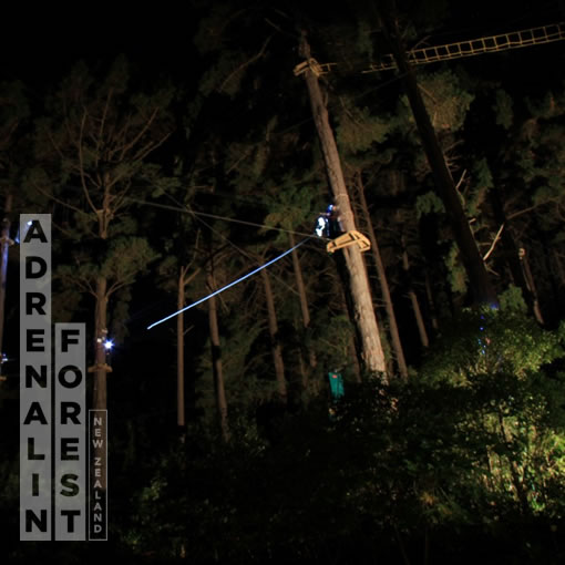 High ropes course at night