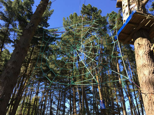 The new spider web at Adrenalin Forest - Christchurch Attactions