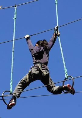 Things to do in Christchurch - Adrenalin Forest