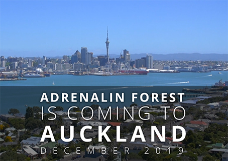 Adrenalin Forest is coming to Auckland