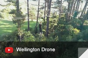 Adrenalin Forest Wellington Drone Video